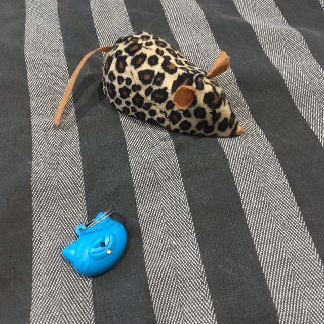 Robotic Mouse