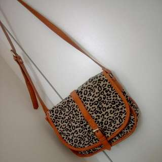 Leopard Small Side Bag / Hand Bag