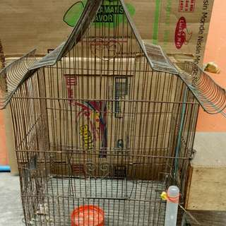 Bird Cage With Nest