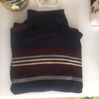 Striped Turtleneck (Medium)