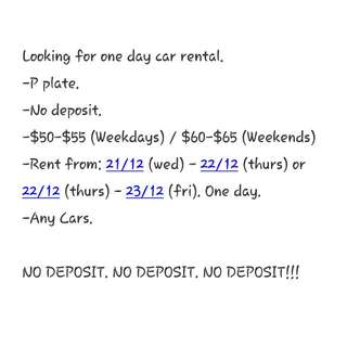 Looking For Pplate One Day Car Rental