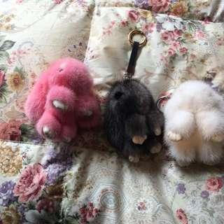 水貂裝死兔