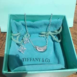 Tiffany & Co Necklace And Diamond Earring