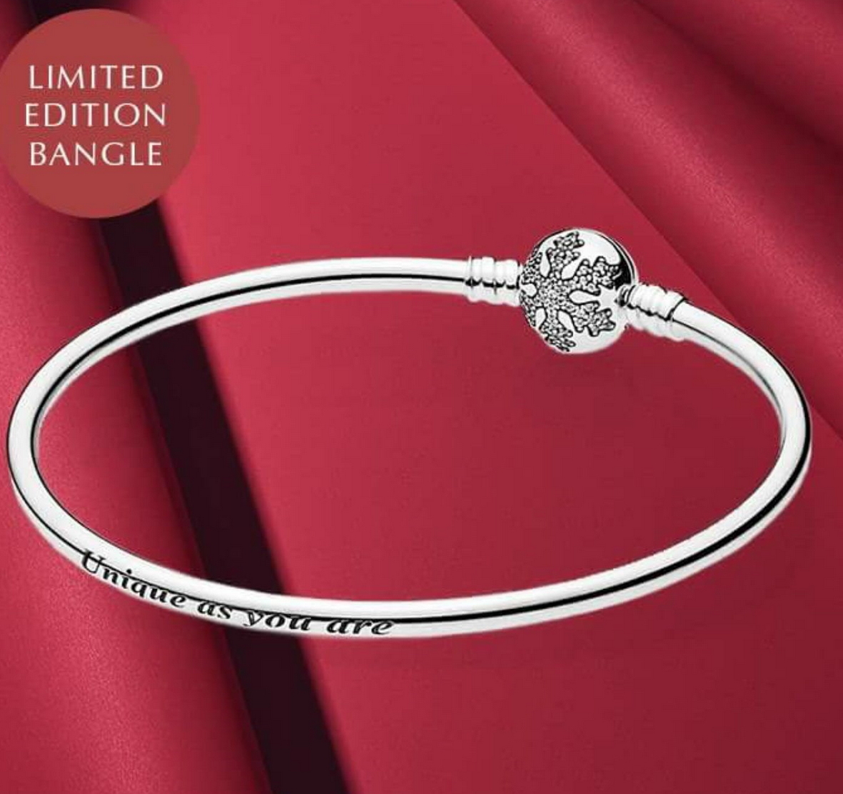 Pandora Bangle *Limited Edition