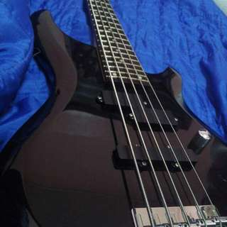 Washburn 5 String Bass