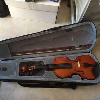 小提琴(成人)