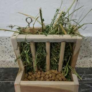 Grass FEEDER