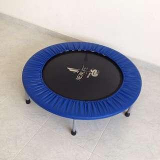 Rebounder / Trampoline