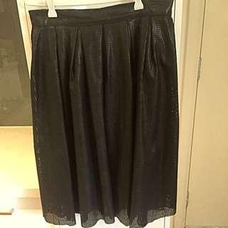Zara Mesh Skirt
