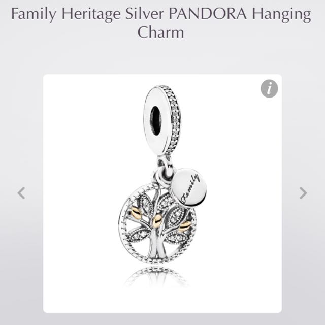 LOOKING FOR FAMILY RELATED PANDORA CHARMS