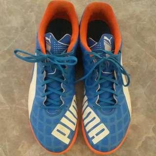 Indoor Futsal Boots: Puma Evospeed 5