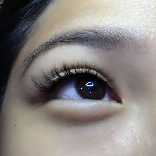 dcd4ec8b172 Classic Single Strand Lash Extensions, Health & Beauty, Makeup on ...