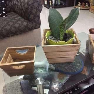 Mini Basket MⓤlTi Purposed Tugas Wood