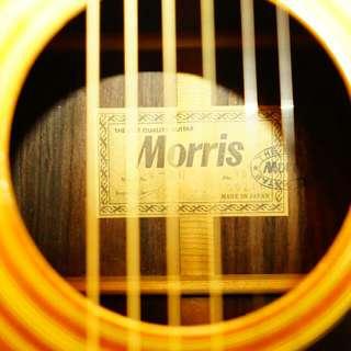 Morris W-30 吉他試賣