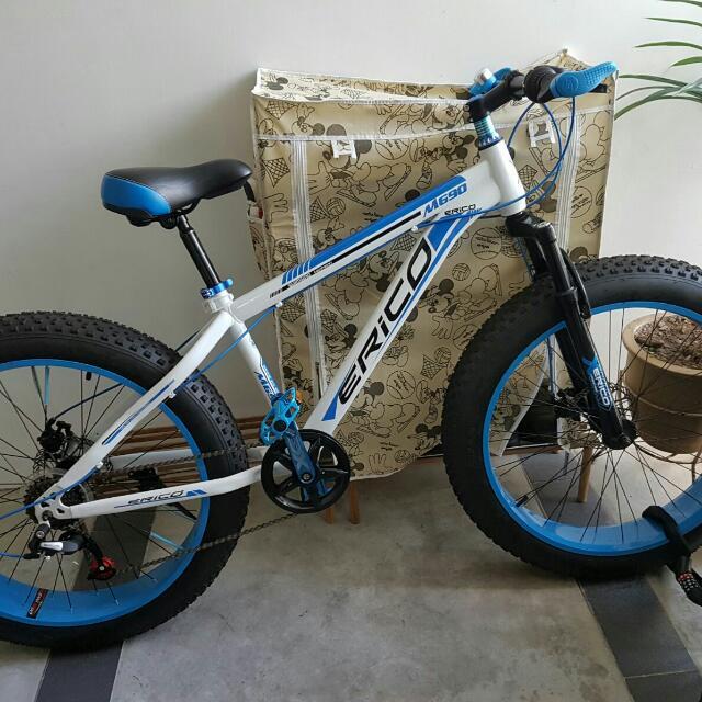 Erico Fat Bike