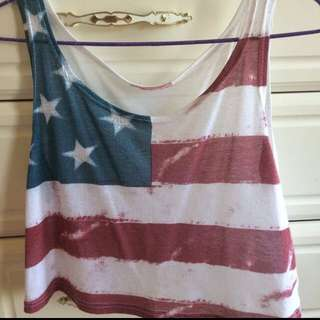 USA Flag Crop