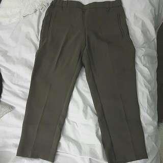 Aritzia Wilfred Darontal Pants
