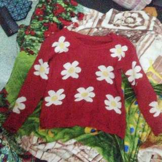 switter rajut crop