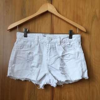 Glassons White Shorts