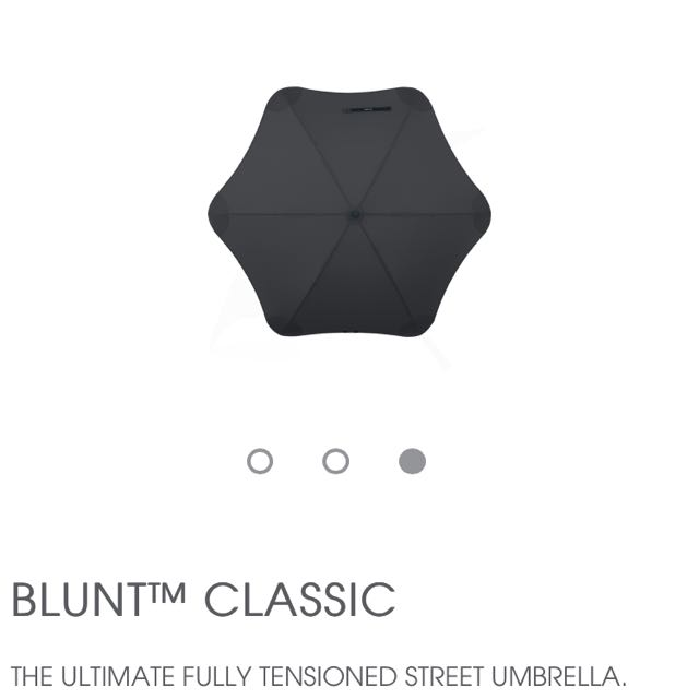 Blunt Umbrella Black With Mint Trim
