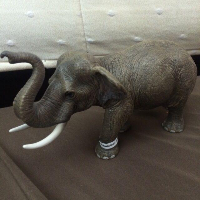 Schleich 史萊奇 亞洲象 公象🐘