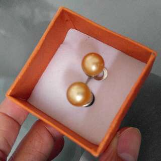 Authentic Philippine South Sea Pearl Earrings (in champagne color)