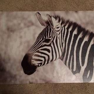 Zebra Picture Room Decor
