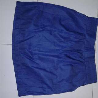Cotton Silk BLue Skirt