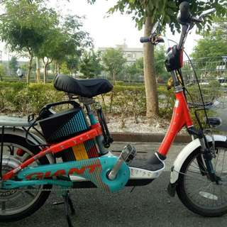 Giant Electric Bicycle 電動自行車