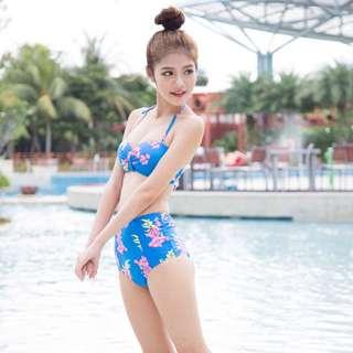 Blue Sakura Bikini (Carislabelle)
