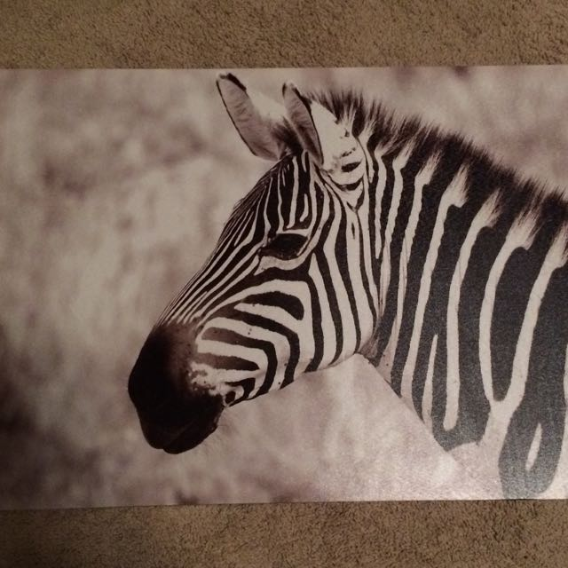 Zebra Picture Room Decor