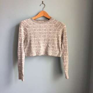 Urban Outfitter Cropped Sweater