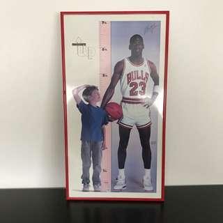 Michael Jordan 1987 Measurement Up Chart