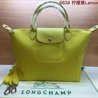 Authentic Long Champ Bag