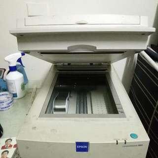 Epson 掃描機
