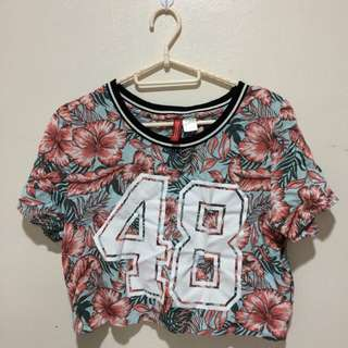 48 Divided Crop Top