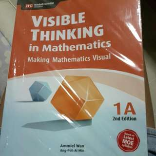 visible thinking math primary 1a
