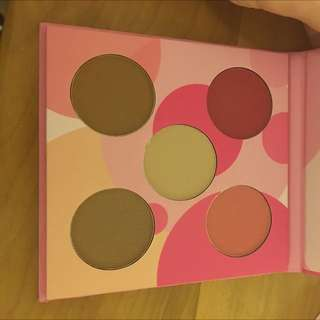 Costal Scents Blush And Bronzer Palette