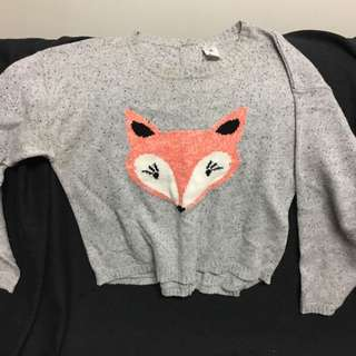 Grey Jumper With Fox Front