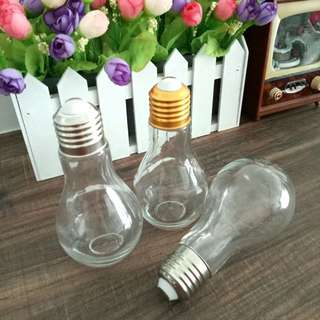BNP: Light Bulb Bottle Ornament