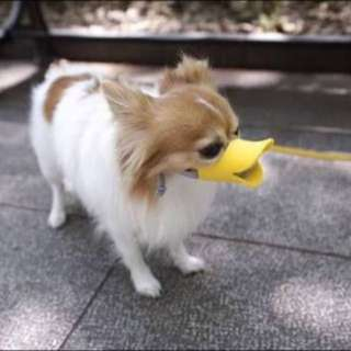 Duck Muzzle For Dog