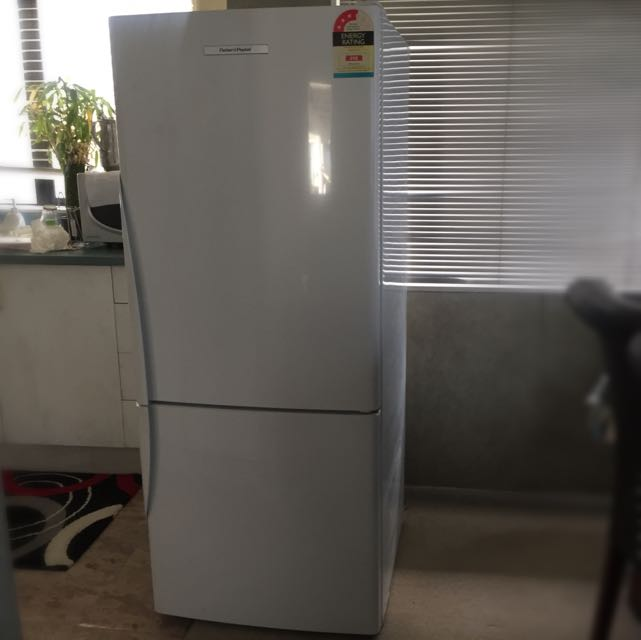 Fisher & Paykel Fridge For Sale