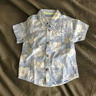 Brand New Pumpkin Patch Boys Shirt