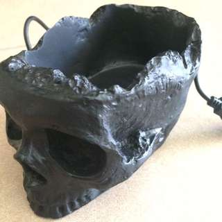 Skull Caddy With 4 USB Holes