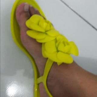sandal jelly