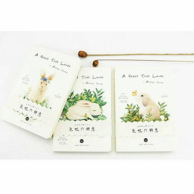 Bunny Sketchbook