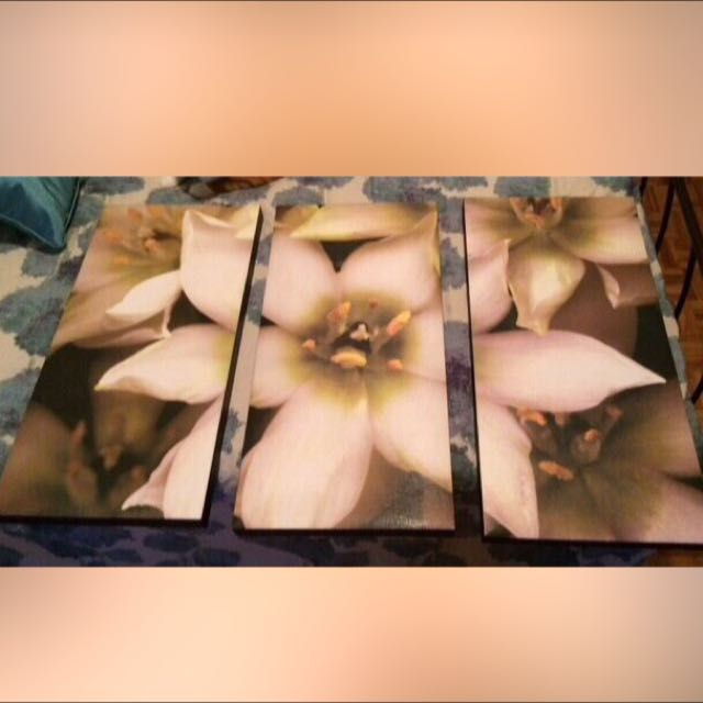 White and green petaled flower painting