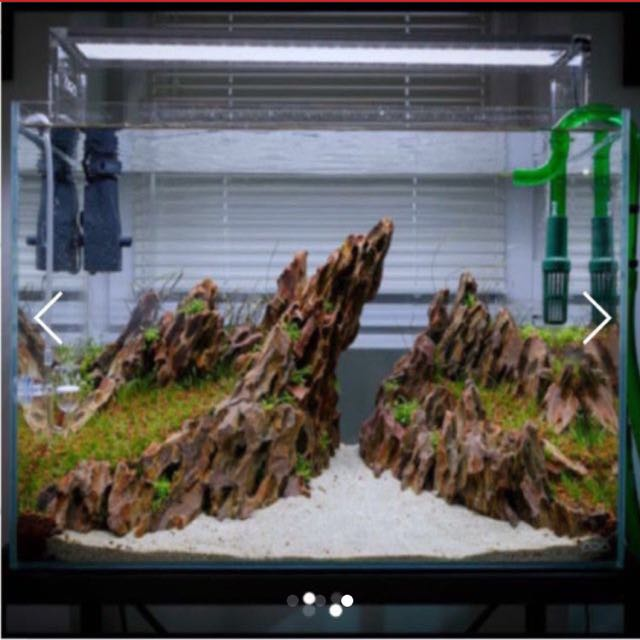 Superbe Dragon Rocks Ohko Stone ADA Aquascaping, Pet Supplies, Pet Accessories On  Carousell