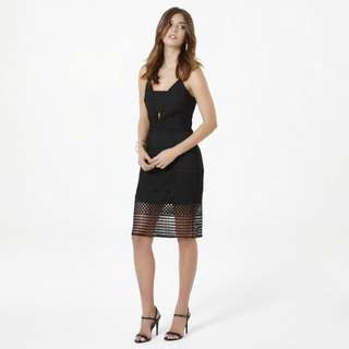 BNWT Size 14  Ci Ci Linear Pencil Dress