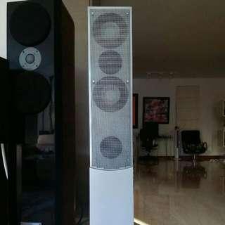 Revox scala diamond speakers German made